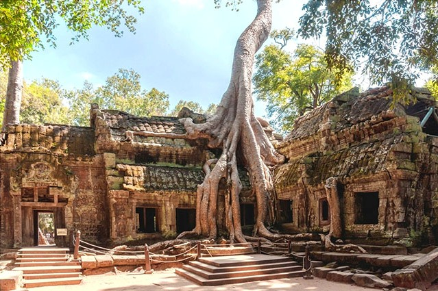Cambodge paysages
