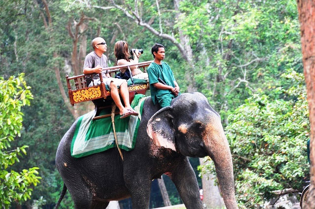 cambodge activités