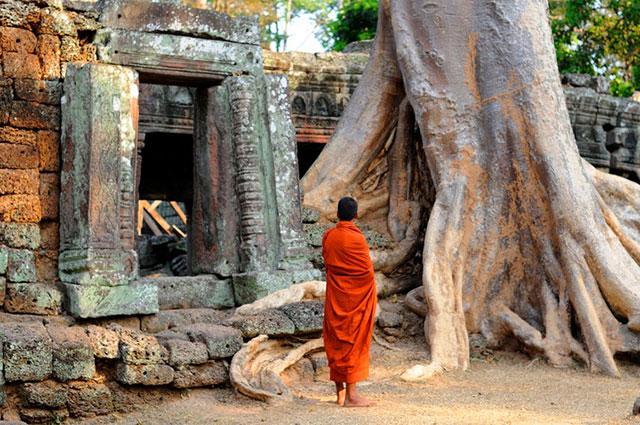 Olina ~ De la forêt des éléphants au Royaume de Kampuchéa