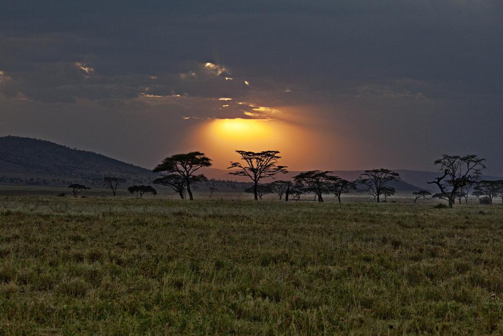Tanzanie & Zanzibar