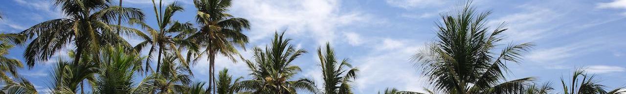 Breezes Beach Club (Zanzibar)