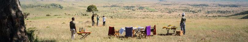 Taasa Luxury Camp (Serengeti)