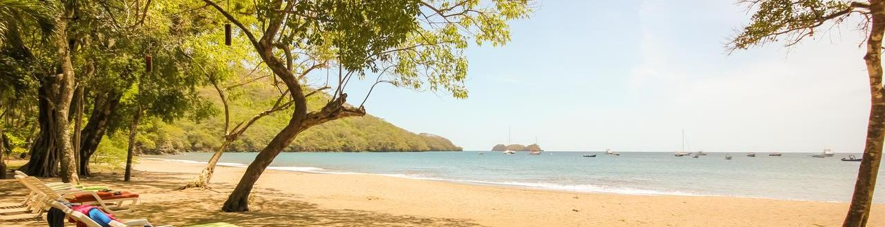 Bosque del Mar Playa Hermosa (Guanacaste)